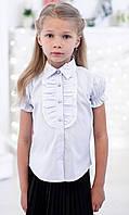 Школьная блузка Свит блуз на короткий рукав голубая мод. 2012  р.140