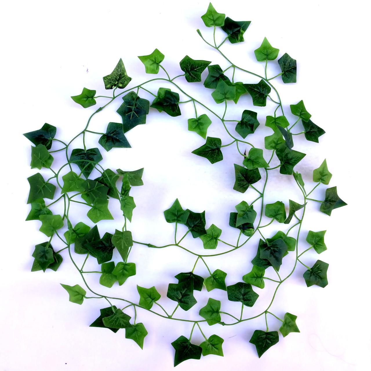 Искусственная Лиана плющ  зеленый. (латекс) 2 м.