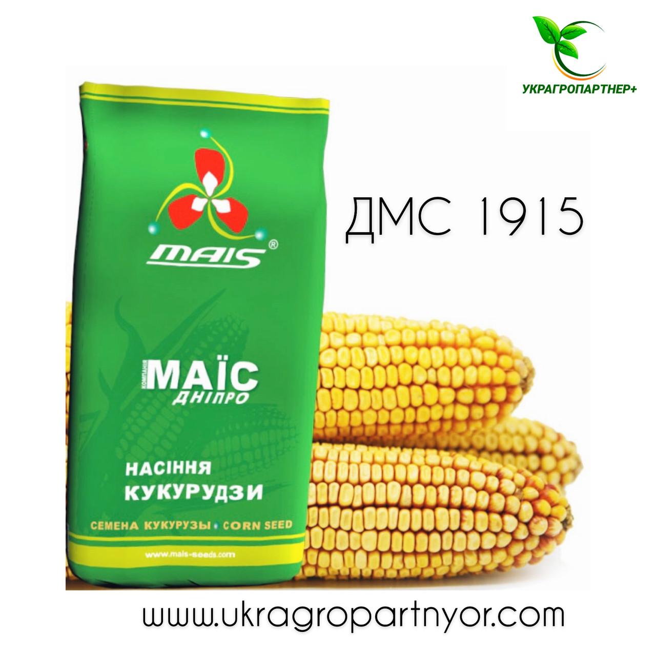 КУКУРУЗА  ДМС 1915 (ФАО - 190)  (МАИС Синельниково)