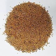 Семена горчицы желтой на сидерат. Эффективное удобрение