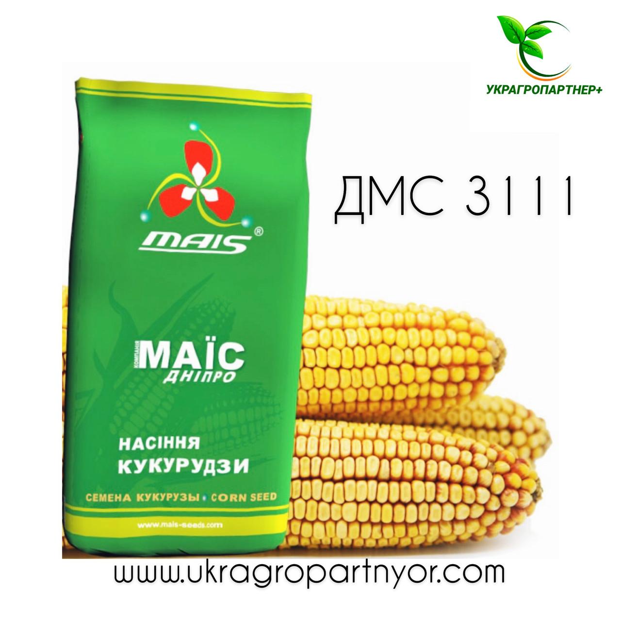 КУКУРУДЗА ДМС 3111 (ФАО - 310) 2020 р. в. (МАЇС Синельн)