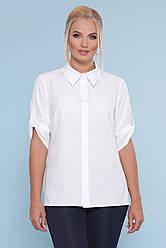 Офисная легкая классическая блузка с воротником рукав 3/4 большие размеры
