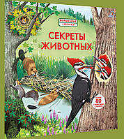 Детская книга Волшебные створки. Секреты животных Для детей от 3 лет