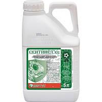 Сентинел, 5л - ПОЧВЕННЫЙ гербицид НА ПОДСОЛНЕЧНИК, КУКУРУЗУ, СОЮ (пропизохлор 576 г/л + метрибузин 60 г/л)