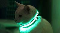 Ошейник LED светящийся узкий для небольших собак и кошек 0.5 м разные цвета