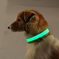 Ошейник LED светящийся узкий для небольших собак и кошек 0.5 м ЗЕЛЕНЫЙ