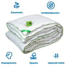 Одеяло евро 200x220 с подушками Алое Вера 200г/м2 антиаллергенное (322.52Aloe Vera), фото 3