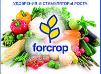 Базова система стимуляції та підживлення томату, перцю та баклажана препаратами FORCROP