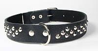 Ошейник для собак Before кожаный с украшениями шипами