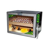 Ламповий інкубатор для різних яєць з автопереворотом, фото 1