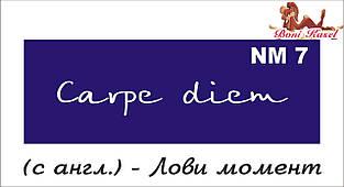трафарет надпись для биотату NM7