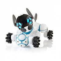 Интерактивные роботы