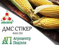 Семена кукурузы ДМС СТИКЕР (ФАО 250) MAIS (бесплатная доставка от 10 п.о.!!!)