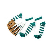 Шкарпетки жіночі Рубіж-Текс 2с136 зелені смуг (35-40)