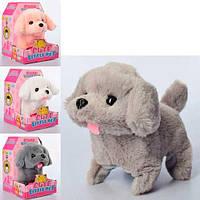 Интерактивная мягкая игрушка Собака МР 2090 звук, ходит