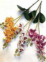 Искусственная орхидея с листиками и корешками ( латекс)