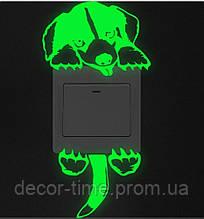 Светящаяся наклейка на включатель (выключатель) , розетку , стену в детскую, светящаяся в темноте Т127