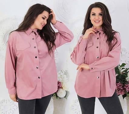 """Женская стильная рубашка до больших размеров 527 """"Вельвет Кнопки"""" в расцветках"""