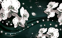 Фотообои флизелиновые 3D цветы 416x254 см Орхидеи и драгоценные камни (2310CNXXX)