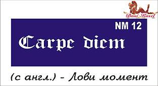 трафарет надпись для биотату NM12