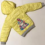 Куртка для девочек 3-8 лет, фото 5