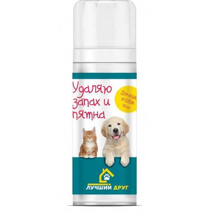 """Спрей Api-San Лучший друг """"Уничтожает запах и пятна"""" для собак и кошек, 100 мл, фото 2"""