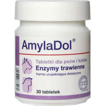 Пищевая добавка Dolfos AmylaDol для котов и собак, 30 табл., фото 2