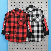 8465 Детская рубашка в клетку с надписями тм GLO-STORY размер 110,120,130,150,160