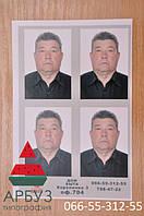 Стандартные требования к фотографии на шенгенскую визу