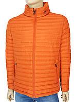 Яркая мужская демисезонная куртка Tiger Force TJBW-50633 C:ORANGE оранжевого цвета