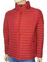 Мужская стильная демисезонная куртка Tiger Force TJBW-50633 C:RED красного цвета