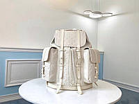 Рюкзак мужской Christopher Louis Vuitton
