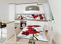 Виниловая наклейка на стол Красная Орхидея (наклейки на столы мебель орхидеи цветы на белом фоне) 600*1200 мм, фото 1