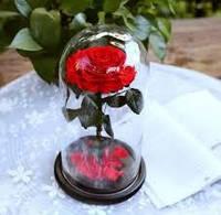 Роза в колбе с LED подсветкой