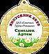 Медали на выпускной в детском саду 70 мм, фото 9