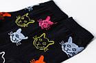 Носки Rock'n'socks Коты цветные синие, фото 2