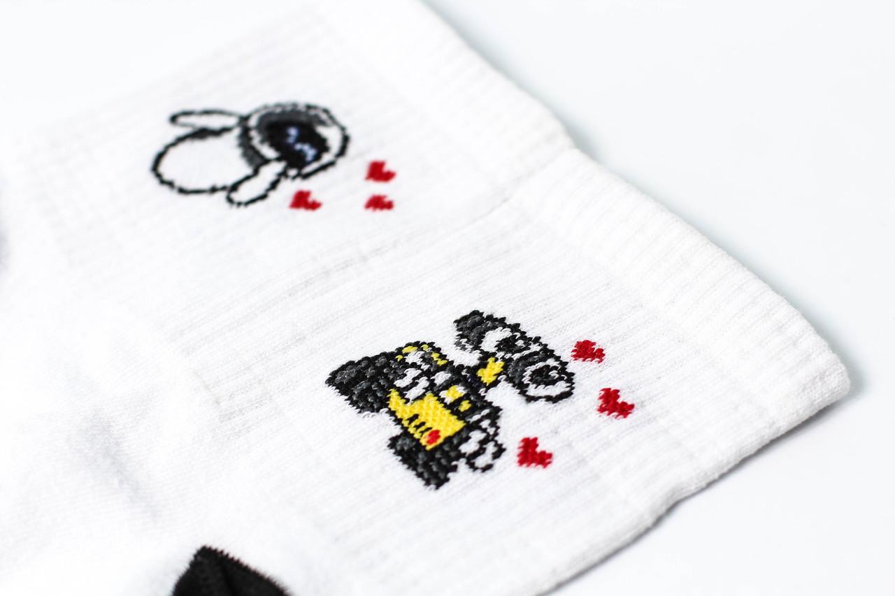 Шкарпетки Rock'n'socks Воллі та Єва