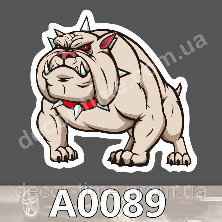 "Стикер: ""A0089"""