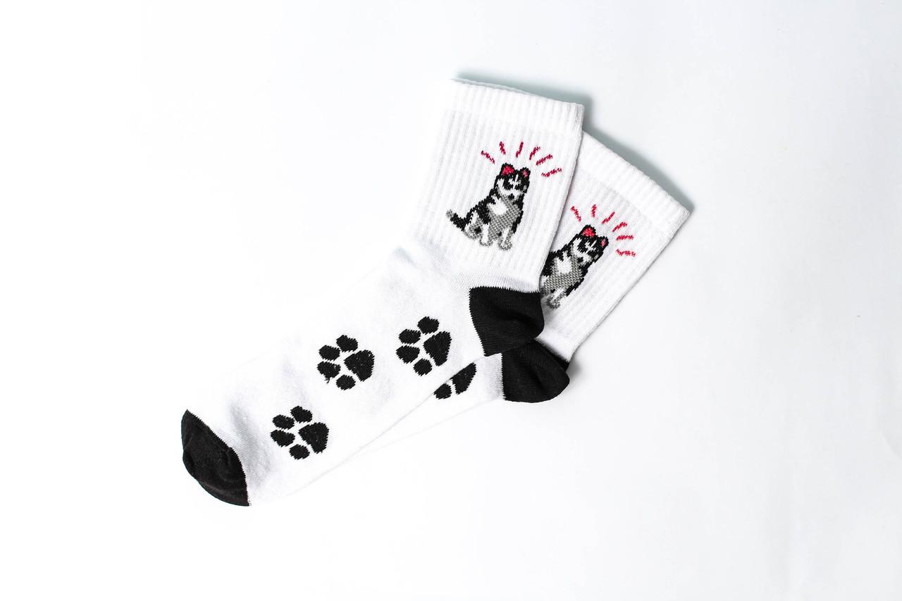 Шкарпетки Rock'n'socks Хаскі