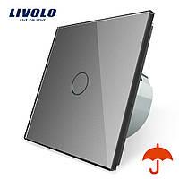 Сенсорный выключатель Livolo для улицы с защитой от брызг IP44 серый стекло (VL-C701IP-15), фото 1