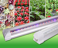 Фитосветильник для растений T8 Led 8W  4RED 2BLUE 600mm  230V