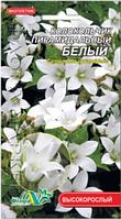 Колокольчик пирамидальный белый, многолетнее растение высотой до 120см, семена цветы 0.01г