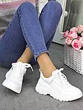 Женские кроссовки кожаные белые в стиле Balenc!aga, фото 5