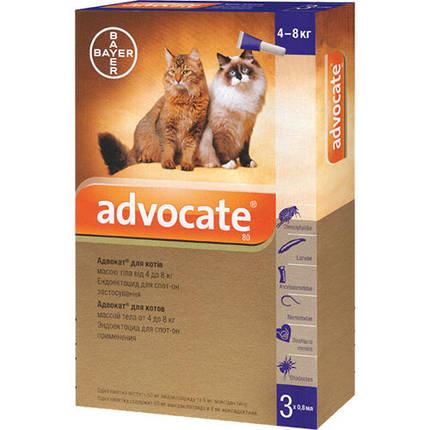 Капли от блох, блошиный дерматит, отодектоза Bayer Advocate для котов от 4 до 8 кг, цена за 1 пипетку, фото 2