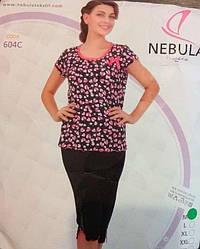 Комплект летний женской домашней одежды,  (футболка короткий рукав+бриджи), Nebula (размер L)