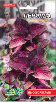 Перилла цветы однолетние декоративное, масличное, лекарственное растение, семена 0.05 г
