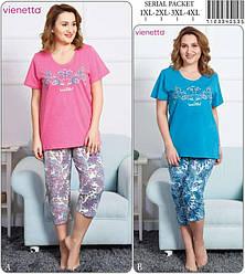 Комплект летний женской домашней одежды (Футболка короткий рукав+бриджи) VS  (размер 4XL)