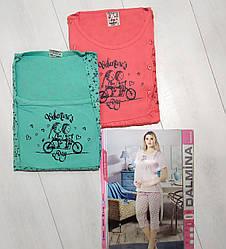 Комплект летний женской домашней одежды, (футболка короткий рукав+бриджи), х/б  DALMINA (размер L)