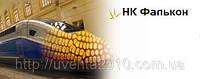 Семена кукурузы НК Фальконе (ФАО-220), фото 1