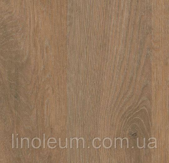 Surestep decibel 71897/718972 rustic oak